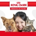 Link to Royal Canin